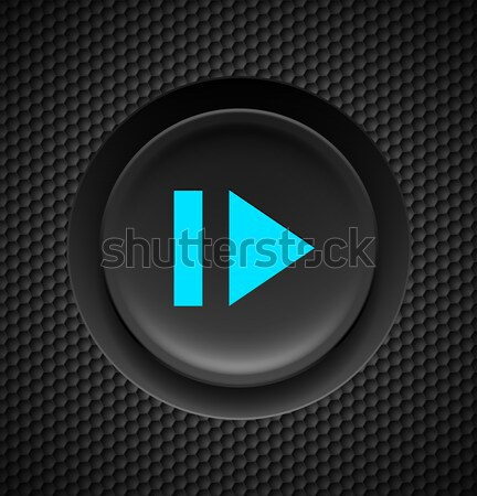 Hızlı geri düğme siyah mavi imzalamak Stok fotoğraf © dvarg
