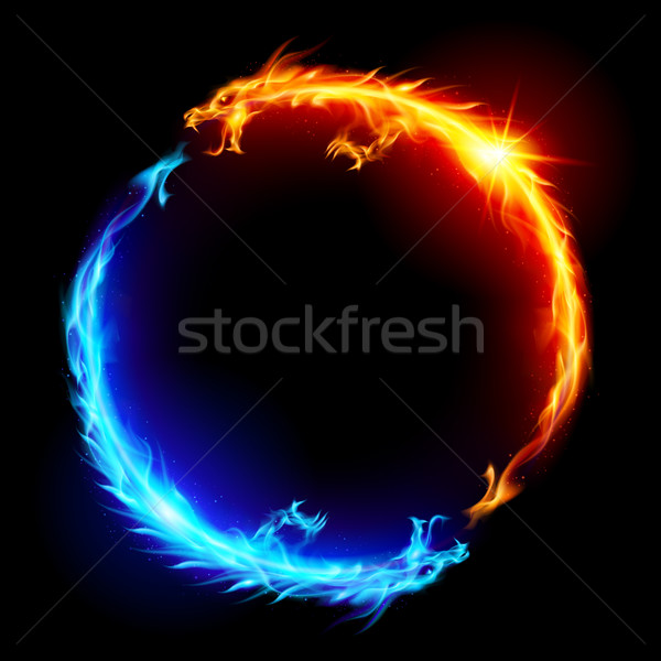 Blue and red fire Dragons Stock photo © dvarg