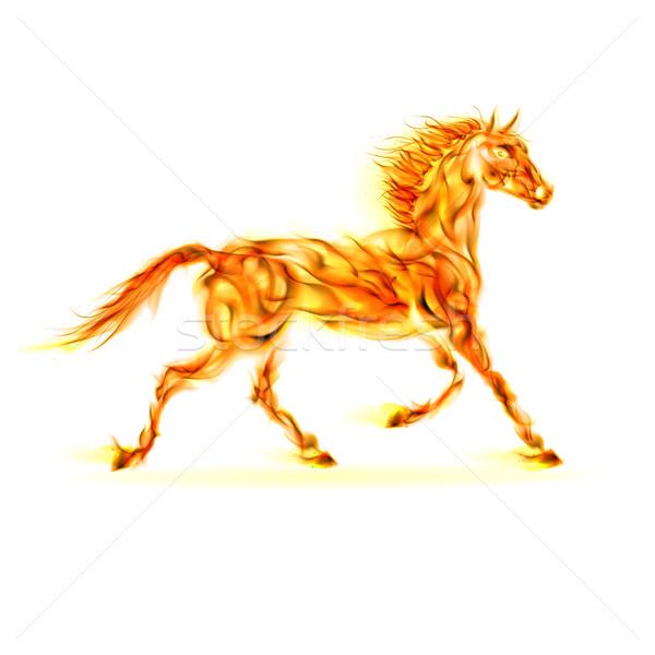 Fire horse. Stock photo © dvarg
