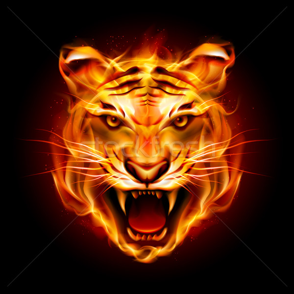 Tête tigre flamme illustration noir sourire Photo stock © dvarg
