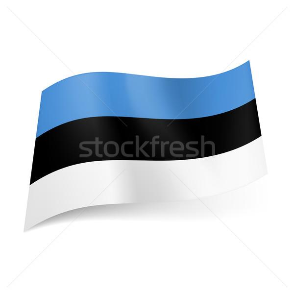 Vlag Estland Blauw zwart wit horizontaal Stockfoto © dvarg