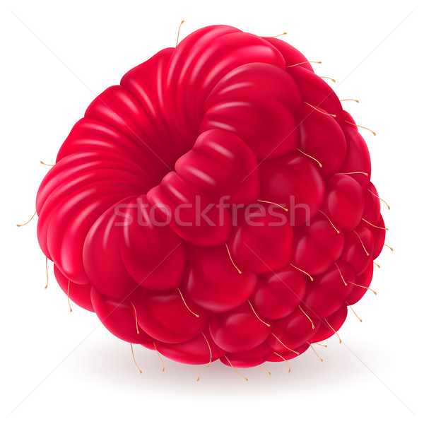 Appetizing fresh raspberry Stock photo © dvarg