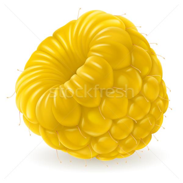 Apetyczny świeże maliny żółty odizolowany biały Zdjęcia stock © dvarg