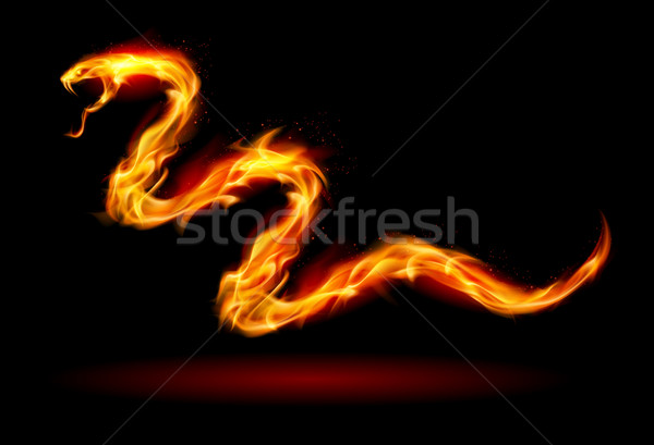 Fire snake Stock photo © dvarg