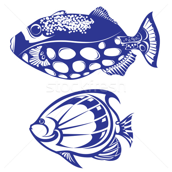 тропические рыбы набор белый дизайна трава рыбы Сток-фото © dvarg