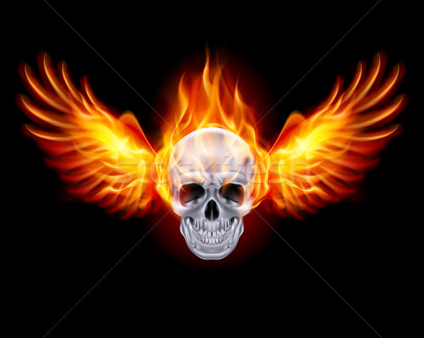 Fiery skull with fire wings. Stock photo © dvarg