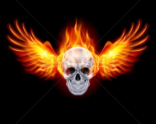Ateşli kafatası yangın kanatlar siyah soyut Stok fotoğraf © dvarg