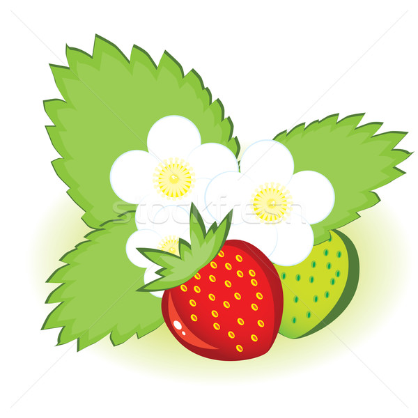Stock photo: Ripe strawberries and green with flowers