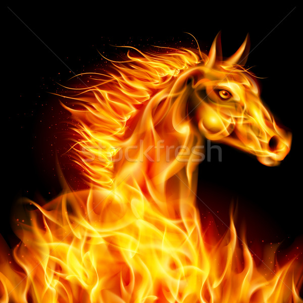 Fire horse. Stock photo © dvarg