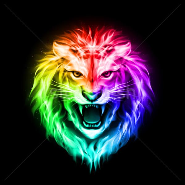 Fej színes tűz oroszlán agresszív spektrum Stock fotó © dvarg