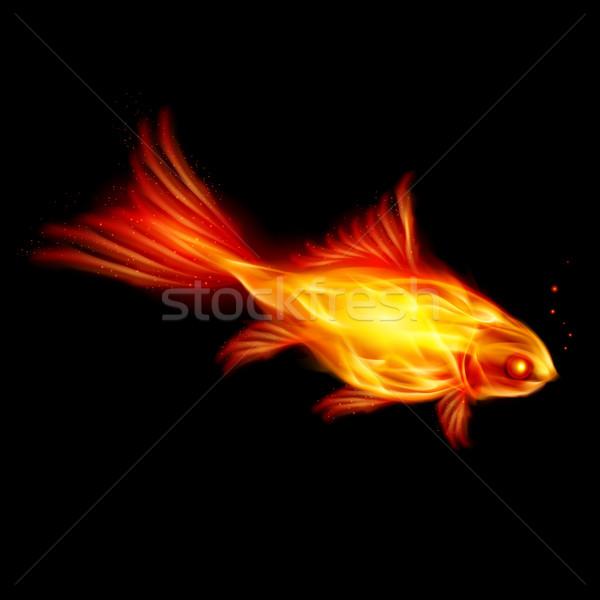 Burning fish Stock photo © dvarg