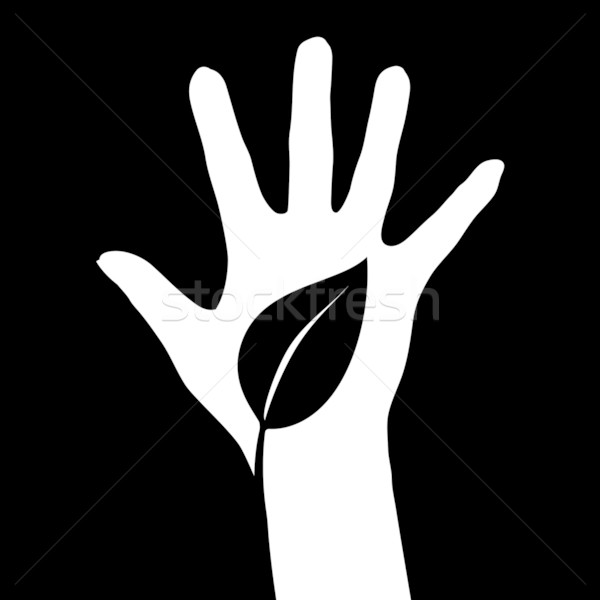 Hand and Leaf Stock photo © dvarg