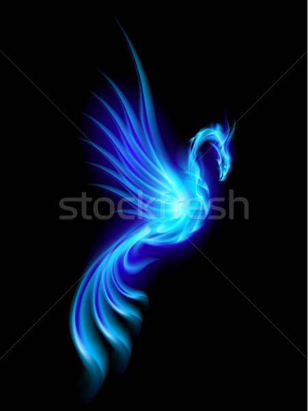 Phoenix brandend Blauw geïsoleerd zwarte hemel Stockfoto © dvarg