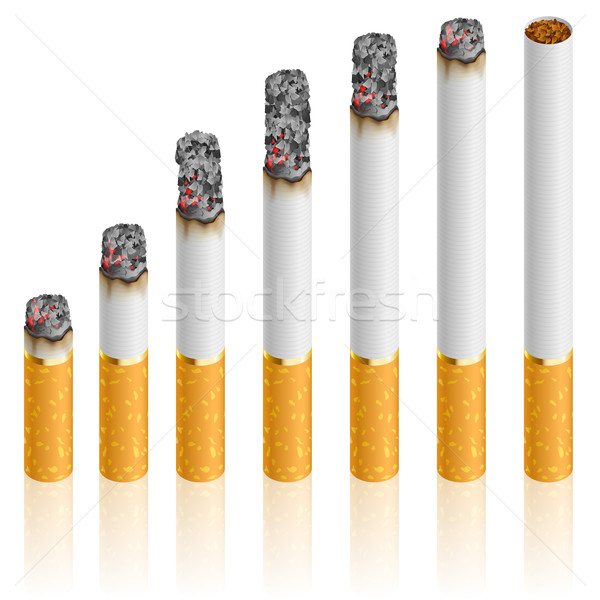 Set of Cigarettes Stock photo © dvarg