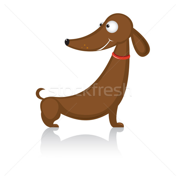 Cartoon grappig hondenras teckel illustratie witte Stockfoto © dvarg