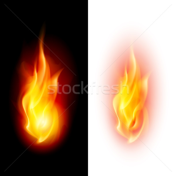 Two fire flames. Stock photo © dvarg