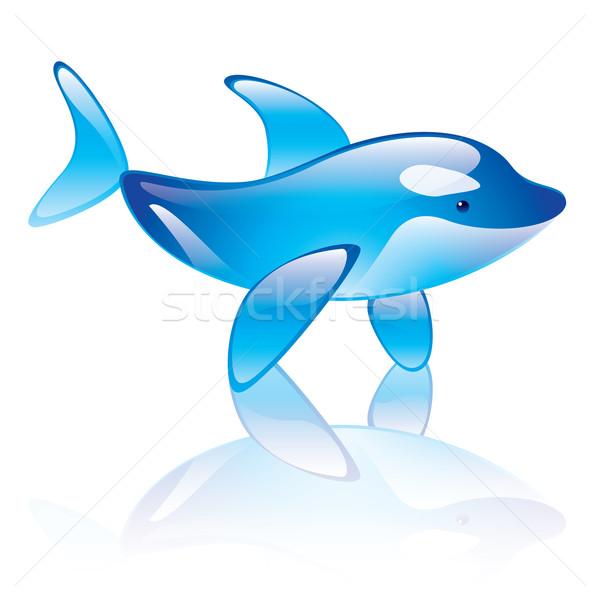 Orca Stock photo © dvarg
