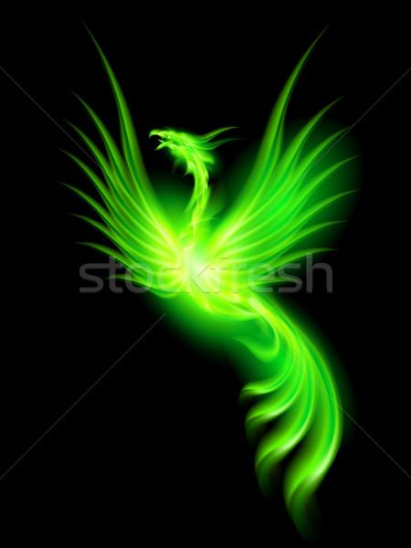 Brand phoenix illustratie groene zwarte vogel Stockfoto © dvarg