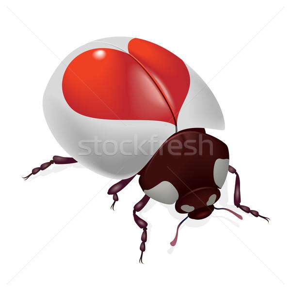 Stok fotoğraf: Uğur · böceği · kırmızı · kalpler · örnek · beyaz · mutlu