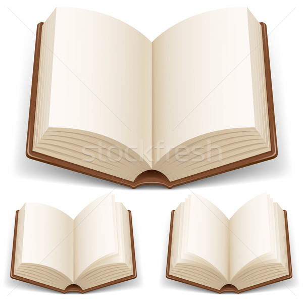 Open boek witte illustratie licht achtergrond Stockfoto © dvarg