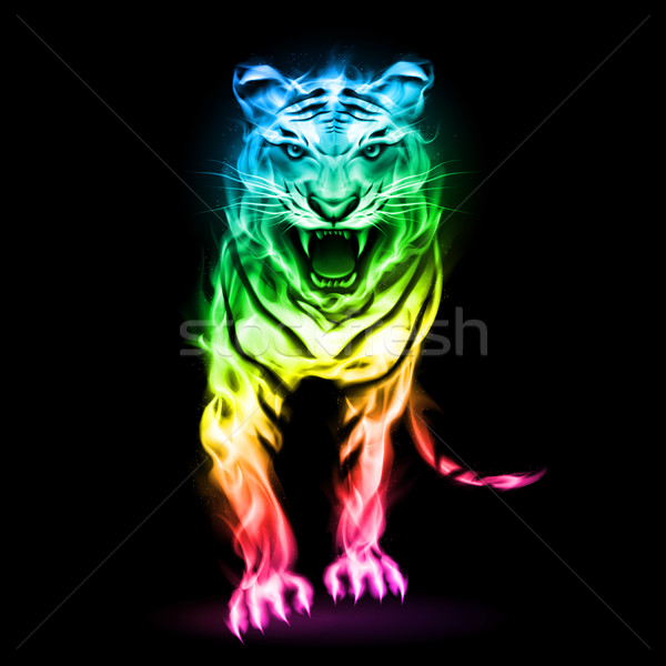 Stock photo: Colorful fire tiger.