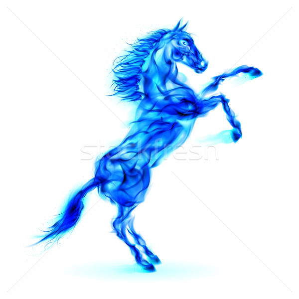 Blue fire horse rearing up. Stock photo © dvarg