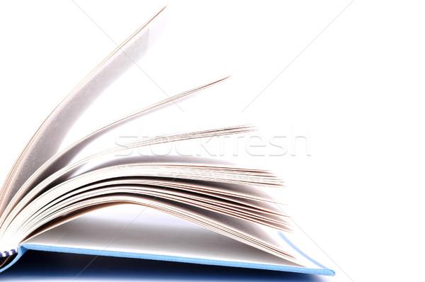 книга синий охватывать белый фон Сток-фото © dzejmsdin