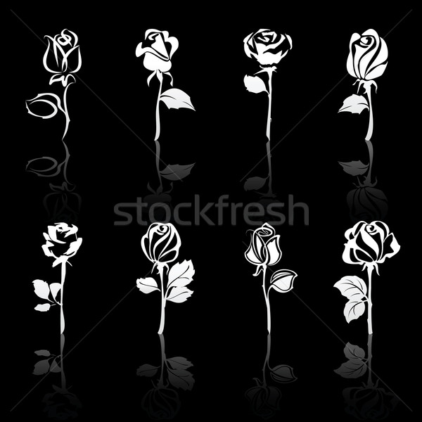 Icon set of flowers Roses with reflections, on black background Stock photo © Ecelop