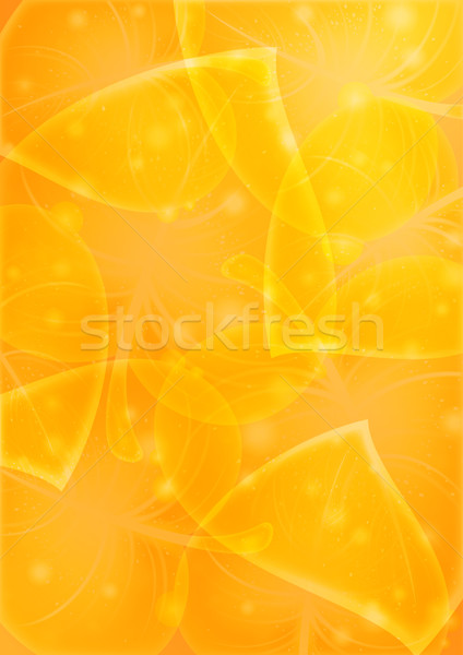 Abstraction leaf-background vector 10 eps Stock photo © Ecelop