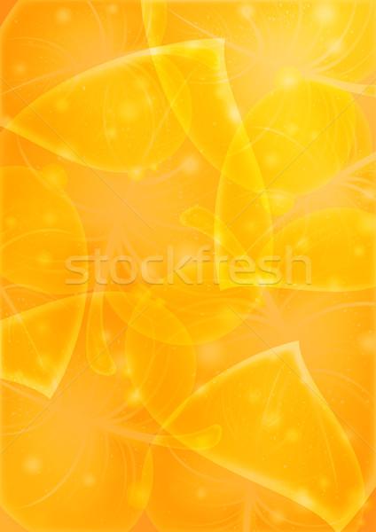 Abstractie vector 10 eps blad boom Stockfoto © Ecelop