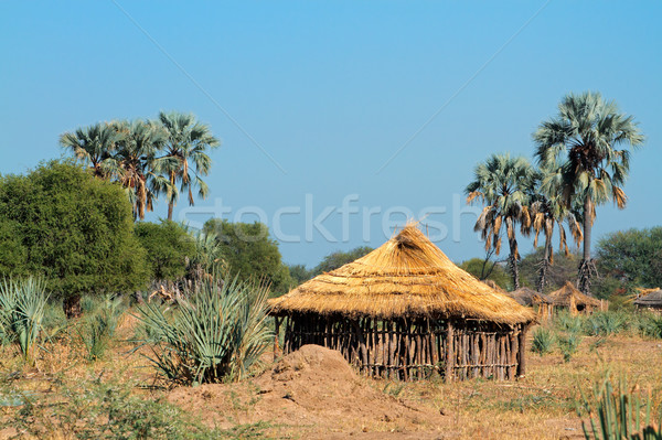 Rural africaine hutte traditionnel bois région Photo stock © EcoPic