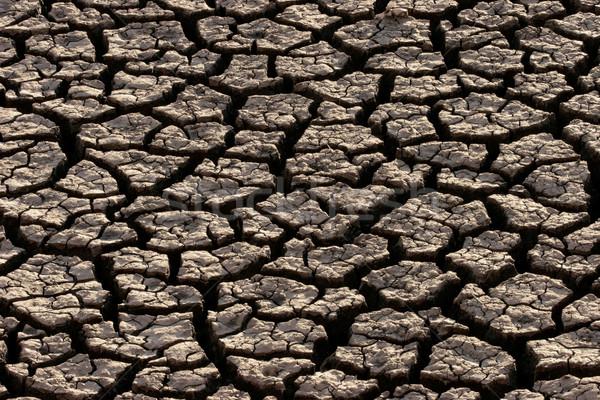 Arazi kırık doğa çöl toprak Afrika Stok fotoğraf © EcoPic