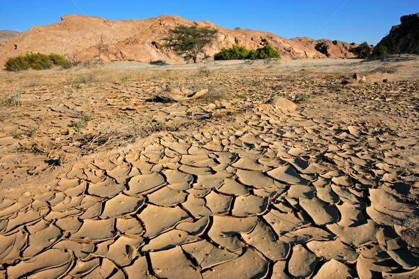 Dry river, Namib desert Stock photo © EcoPic