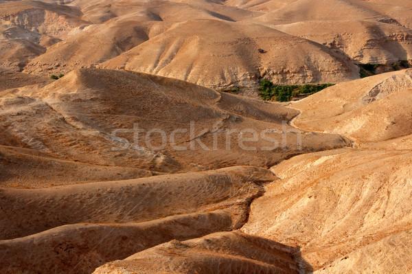 Judean desert landscape Stock photo © EcoPic