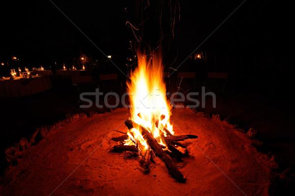 Kamp ateşi açık ahşap yanan karanlık yangın Stok fotoğraf © EcoPic
