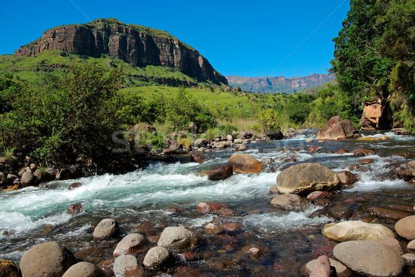 Mountain river Stock photo © EcoPic