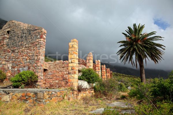 Ruiny budynku mgły stary budynek palma domu Zdjęcia stock © EcoPic