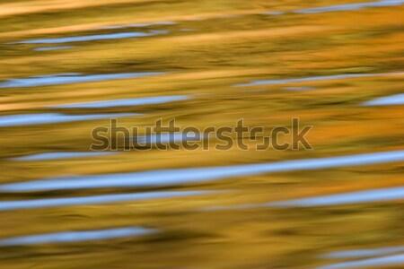 水 思考 質地 背景 商業照片 © EcoPic