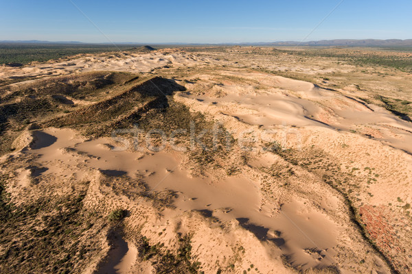 Aerial view of sand dunes - South Africa Stock photo © EcoPic