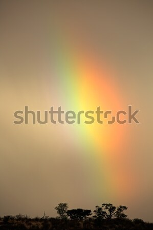 Rainbow landscape Stock photo © EcoPic