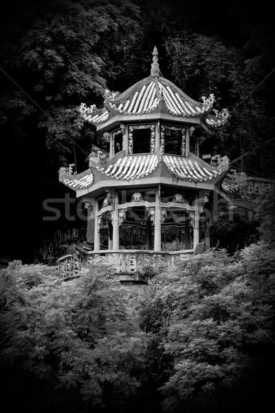 Cinese pagoda in bianco e nero immagine giardino albero Foto d'archivio © EcoPic