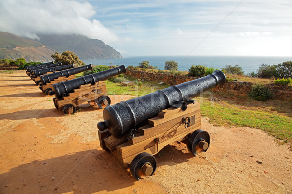 Old cannons Stock photo © EcoPic