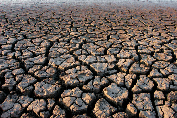 Grond gebarsten droogte natuur dood afrika Stockfoto © EcoPic