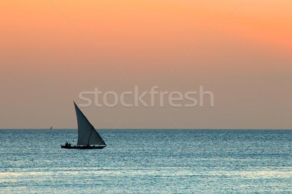 Zeilboot water silhouet klein zonsondergang zee Stockfoto © EcoPic