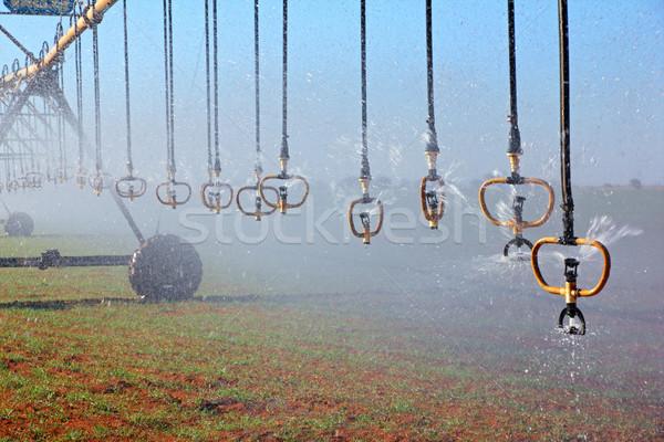 Pivot irrigation Stock photo © EcoPic