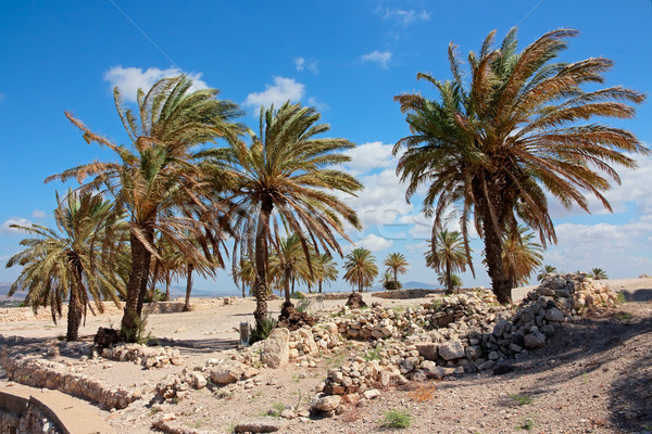 Tel Megiddo National park - Israel Stock photo © EcoPic