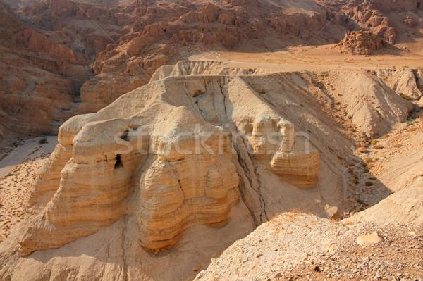 Woestijn archeologische plaats west bank Israël Stockfoto © EcoPic