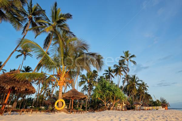Tropical beach Stock photo © EcoPic