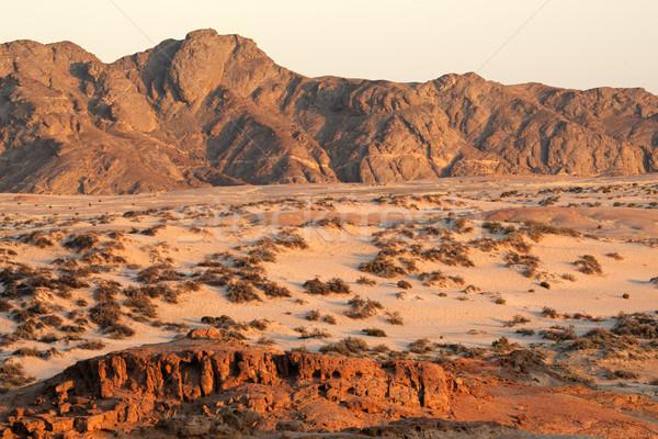 Namib desert Stock photo © EcoPic