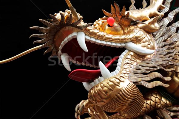 Китайский дракон открытых животного дракон Азии языком Сток-фото © EcoPic